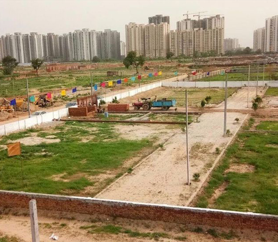 Noida Authority Plots